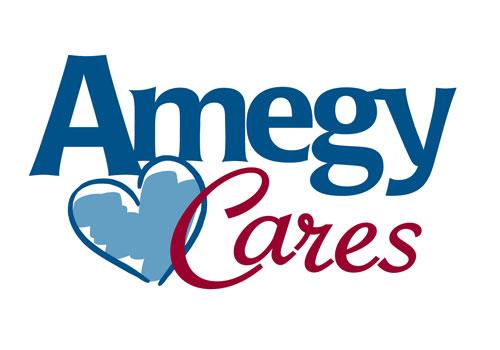 AmegyCares-widget-500x350