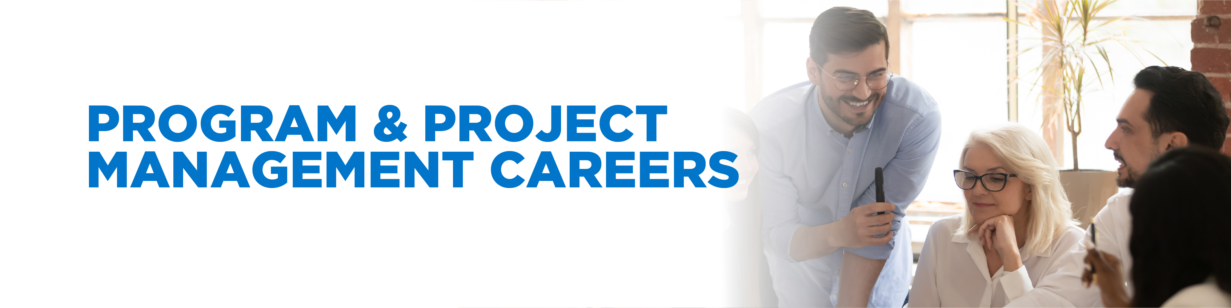 Program/Project Management Careers