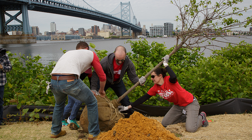 Campbell employees plant a tree