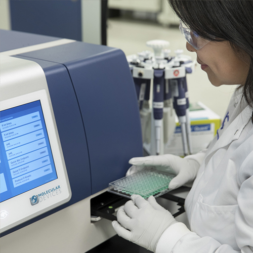 Photograph of Molecular Devices associate in lab