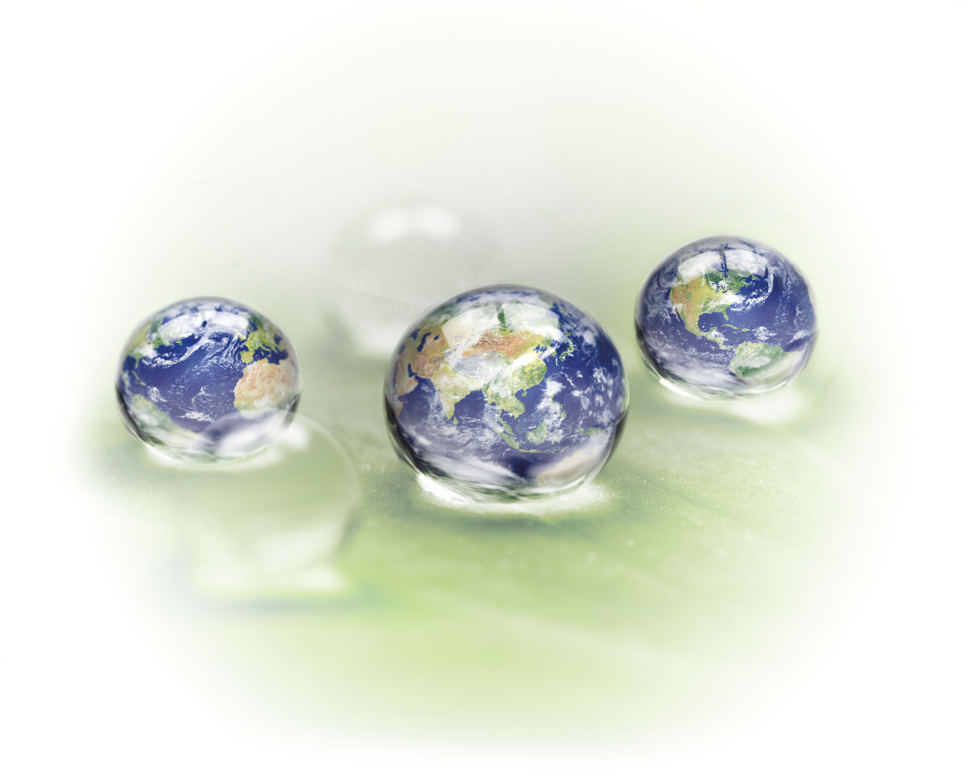 Image of water droplets on a leaf with globes in them