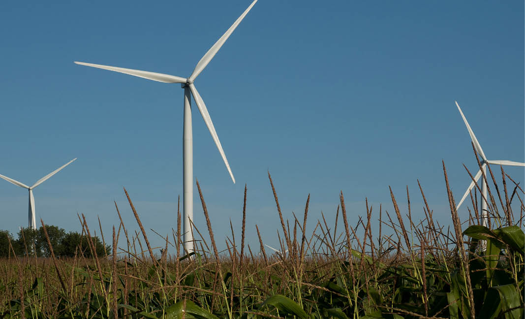 Windmill generating alternative power in a field.