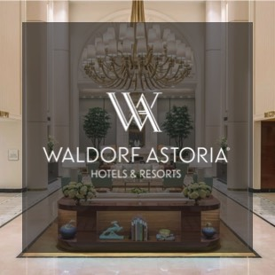 waldorf image