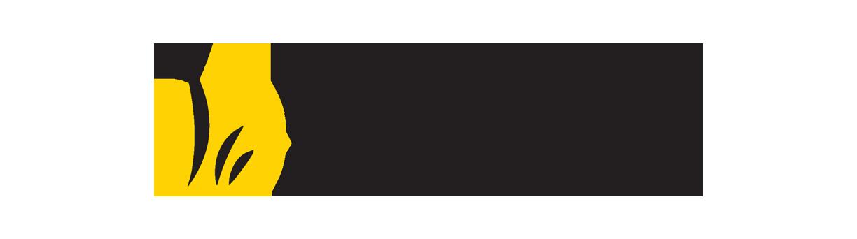 massage retreat spa