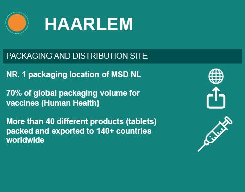 summary NL Haarlem