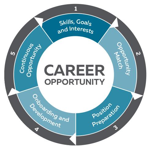 Career Opportunity wheel