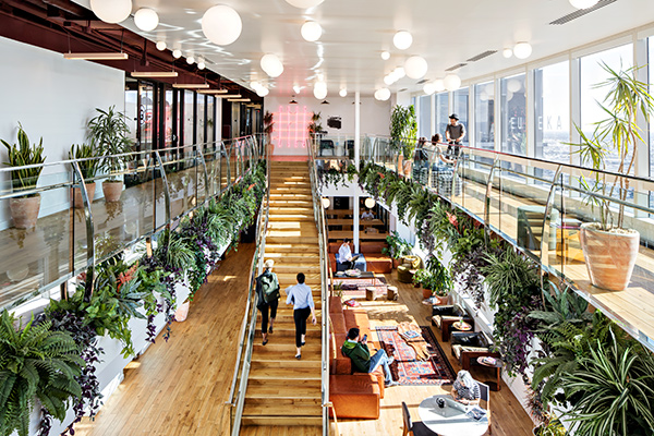 Careers At Wework Wework Jobs