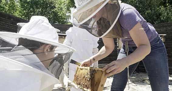 Beekeeper Showing Kids Honeycomb